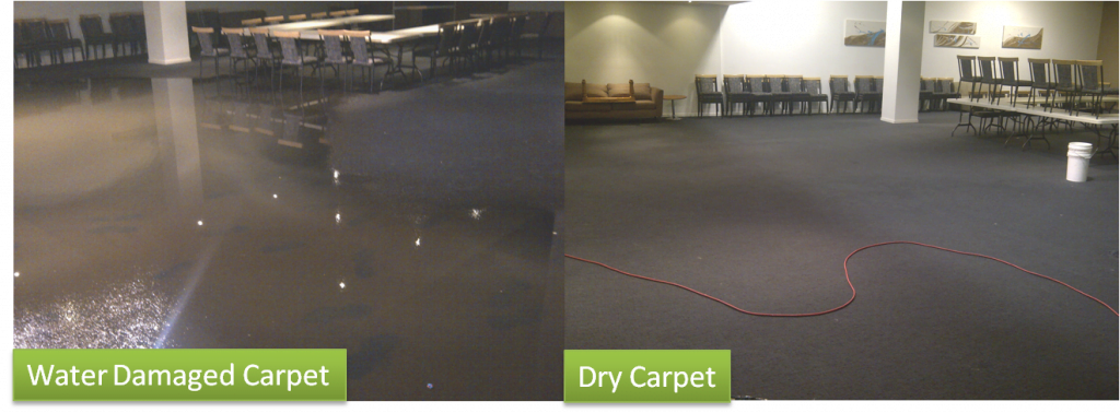 Water Damage Carpet Restoration Before and After